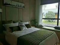 出售成中 拉菲1室1厅1卫48.6平米30万住宅