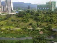 鑫悦湾楼王看中庭,正看公园,带车位