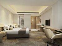临港中央投资公寓 精装修单价仅8千 居家投资皆可邦泰国际旁 首付低