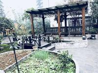 鑫杰座带290平米超级大花园