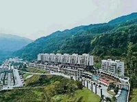 养生仙居 旅游景区核心位置 首付8万