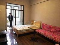 莱茵河畔 单身公寓出售1室 48.2万精装修