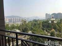 麗雅大院高層洋房,正看公園臨江