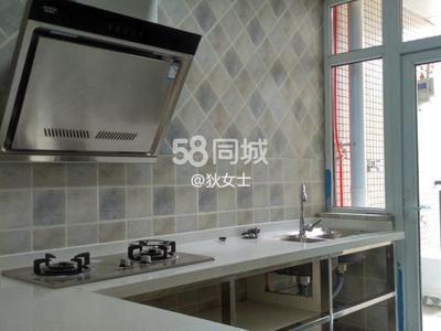 南岸長江之濱 中裝 家具家電齊全 含車位整租2500元每月