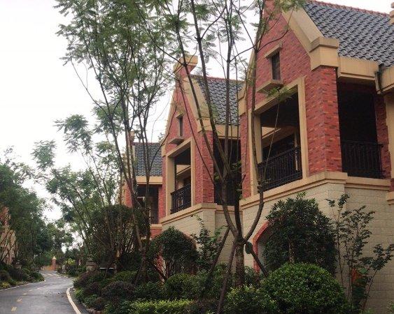 出售御景莊園5室3廳4衛355平米150萬住宅