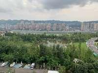 麗雅上城正面看江,看公園,帶豪華大車位