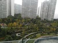 丽雅龙城117户型,正看中庭