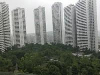 丽雅龙城正看中庭138户型