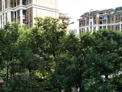 丽雅大院193万,156户型4房