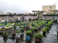 龙源府邸带顶独立楼花园
