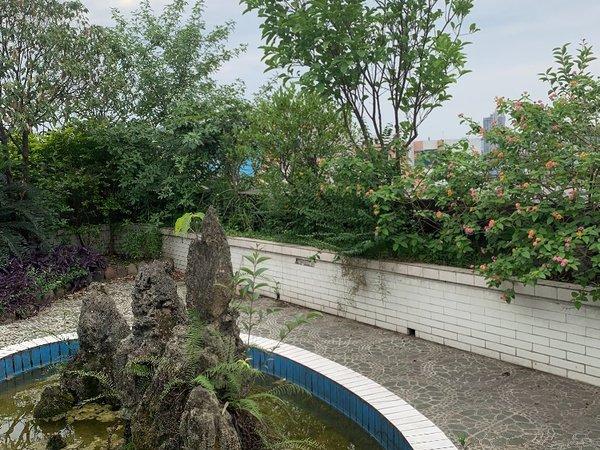 出租长江大道中段5号电视台侧税务局宿舍3室2厅1卫130平米1600元/月住宅
