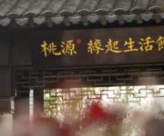 丽雅·桃源谷效果图
