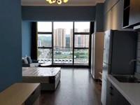 临港区浙商临港新天地 精 装公寓 标准一室一厅 急售