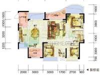 龙源府邸115户型,标准4房2卫