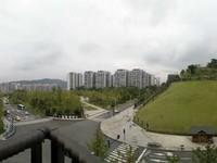丽雅上城看公园,视野开阔