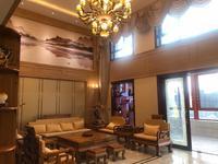 丽雅大院联排双拼别墅5层独立电梯一线江景带私家KTV酒窖露台