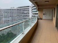 丽雅龙城147户型豪装看江景房有带储物间的车库看中庭位置4房