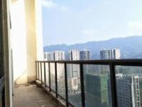 鑫悦湾空中别墅219万带100平米顶楼花园有双车位可议价
