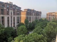 西区丽雅大院洋房高层正中庭安静156户型视野开阔有车位