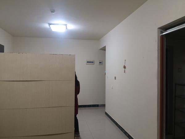 南岸新三中旁边电梯房,2021年6月下旬可租,电话15892551600