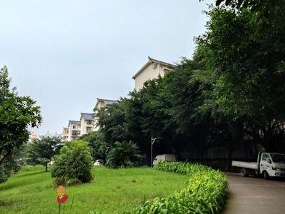 森林小区全新装修住房出租
